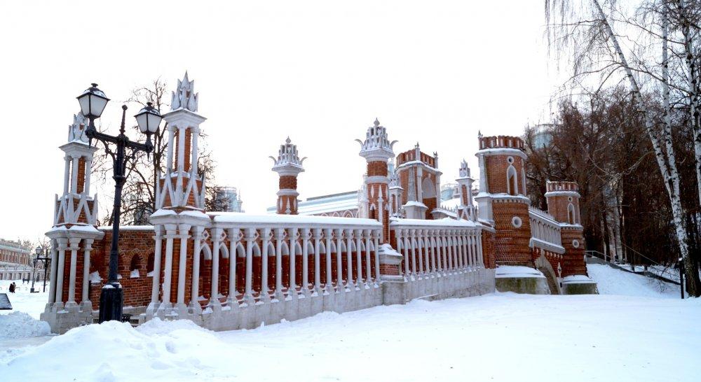12 объектов образования построят в районе Царицыно