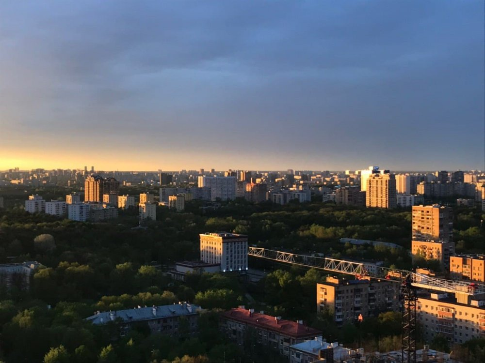 В Домодедово завершилась вторая очередь благоустройства парка «Городской лес»