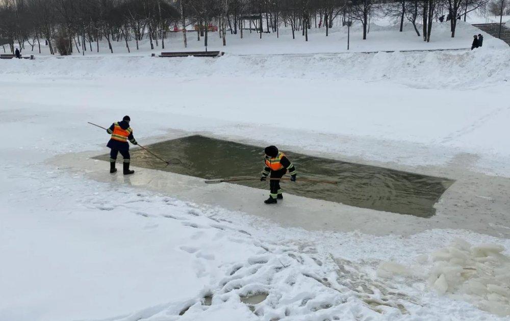 Как спасали уток в Бутово