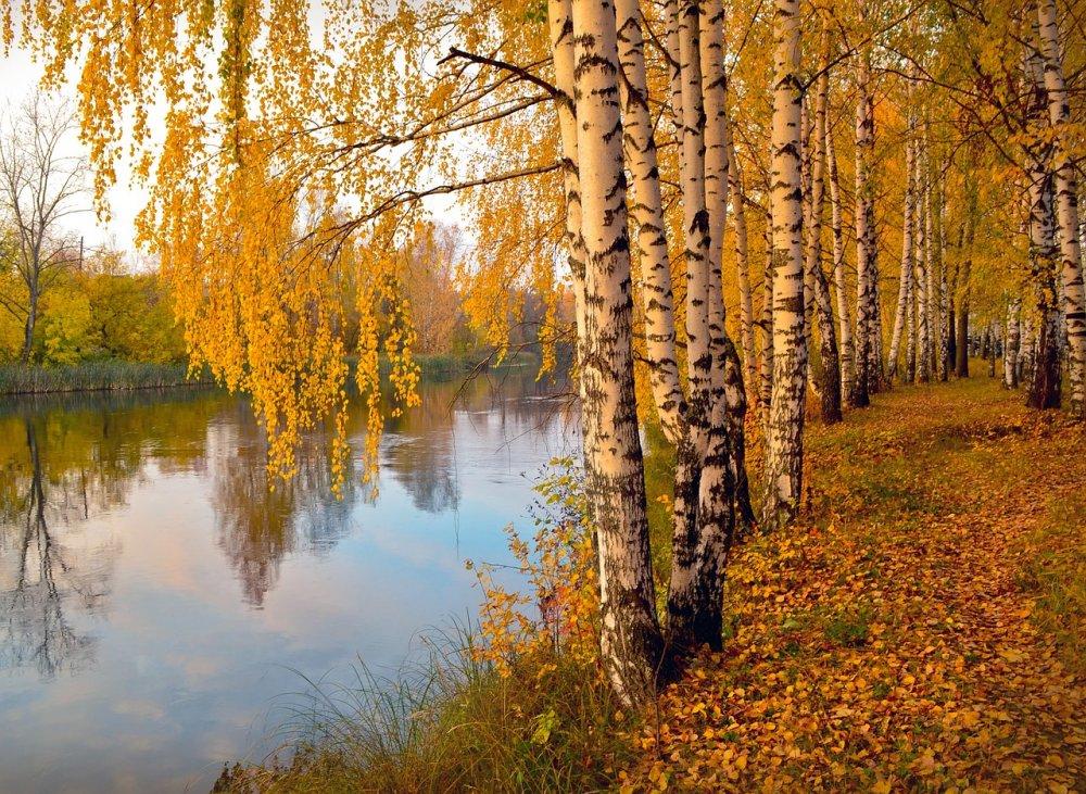 В Новотроицке до конца года благоустроят Молодежную аллею