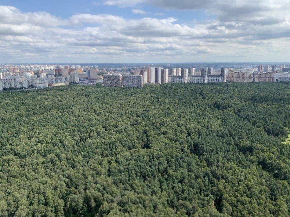 Около 16 тысяч человек получат новое жилье на первом этапе программы реновации на юге Москвы
